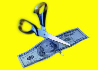 Blogpicture-budgetcut