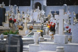 Blogpicture-cemetery